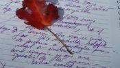 leaf and purple writing