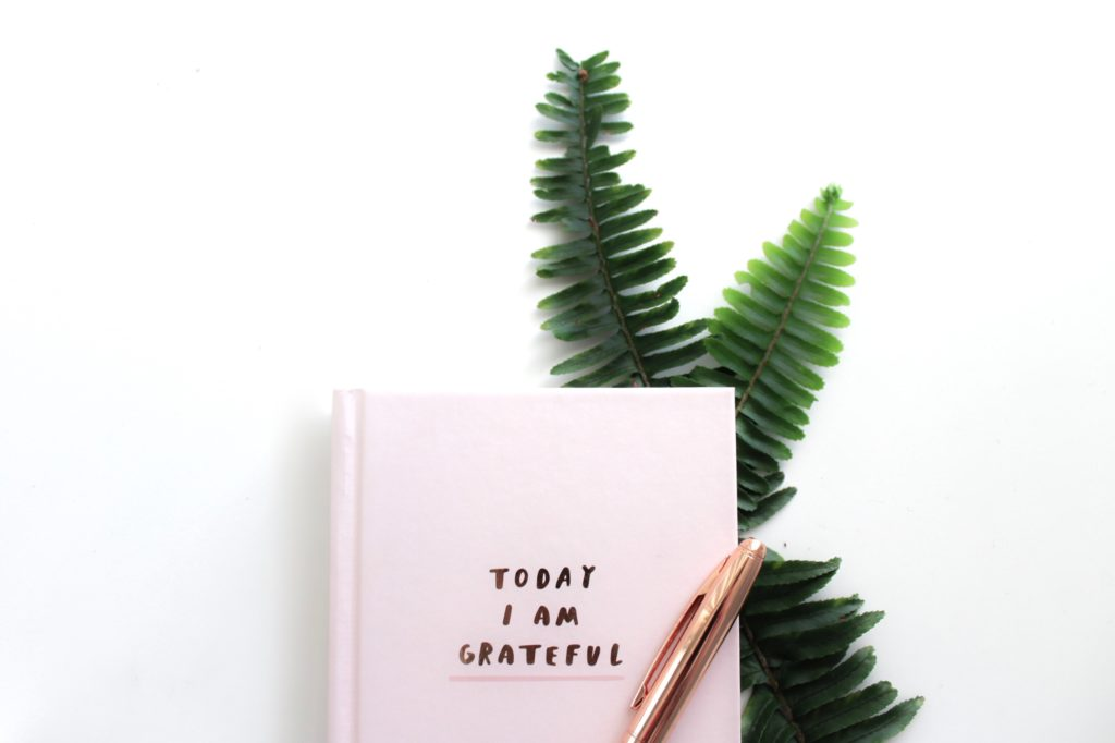 Creative Muse Gratitude journal